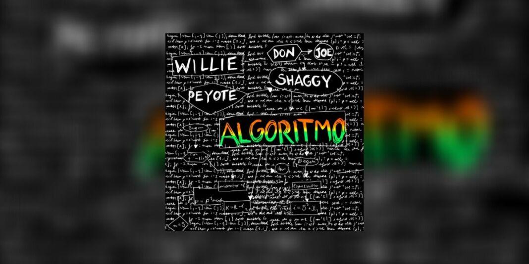Willie Peyote Shaggy Algoritmo